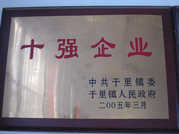 十强企业 2005