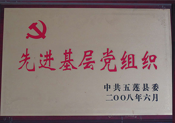 先进基层党组织 2008